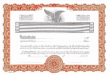 KG2 Stock Certificates, Orange Per Dozen Blank